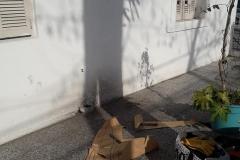 Mural Picadito - Carboni